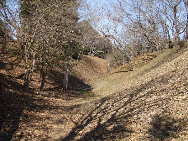 印旛沼公園・空掘