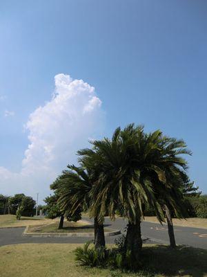 20100822.フォト日記(夏空)