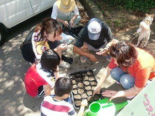 H.22.07.19.印旛沼公園・ブログ原稿(みどり会)②