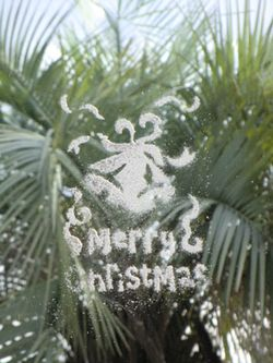 20101127(窓)