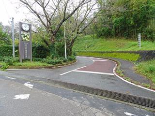 Carpark-1