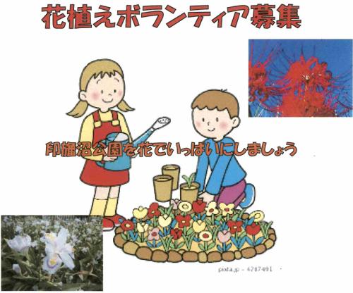 花植えボランティアs